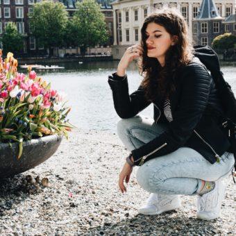 Strolling through The Hague